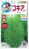 【ほうき草】コキア【サカタのタネ】(0.5ml)【春まき一年草】907180
