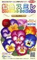 【パンジー】虹色スミレミックス