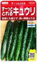 【ずーっととれるキュウリ】【一代交配】(18粒)野菜種/サカ