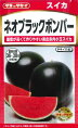 【黒皮小玉スイカ】ネオブラックボンバー【小玉スイカの種】タキイ