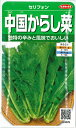 【セリフォン】中国からし菜【サカタのタネ】(8ml)中国野菜/野菜種[春まき]923376