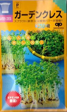 【スプラウト】ガーデンクレス(胡椒草)【中原採種場】(35ml)野菜種