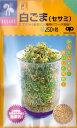 【スプラウトの種】白ごま(セサミ)【中原採種場】(40ml)野菜種