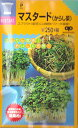 【スプラウト】マスタード(からし菜)【中原採種場】(40ml)野菜種