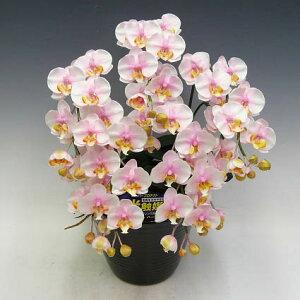 造花光触媒胡蝶蘭ミディSサイズ桜ピンク(絞りピンク)5本立ちテーブルサイズ