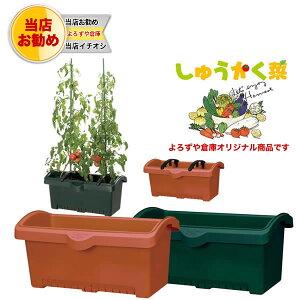 培養土タップリのプランターで楽しい美味しい家庭菜園を♪しゅうかく菜 800型/家庭菜園プラン...