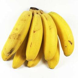 モンキーバナナ 箱入り