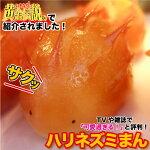 TV【いきなり黄金伝説】に出た!おいしくってカワイ〜!ハリネズミまん(25gx12個)