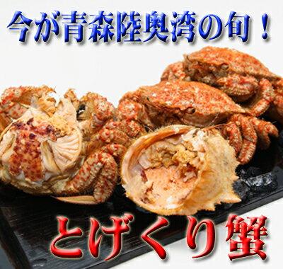 青森陸奥湾産トゲクリガニ【大サイズ】メス約1kg4〜5杯
