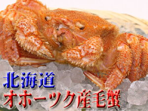 北海道オホーツク産毛蟹2,890...