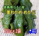 【徳島県なると産】塩蔵茎わかめ【めかぶ】250g×2パックコリコリの食感が人気!!栄養タップリ健康茎わかめ【送料無料】メール便でお送りします。内容量、価格を変更しました。