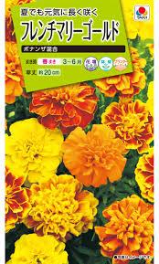 花種 NL200 フレンチマリーゴールド ボナンザ混合 小袋 [FKJ250] 【花の種】【タキイのタネ】【ガーデニング】【孔雀草】【万寿菊】