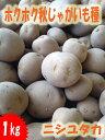 早期肥大し揃いもよく多収秋じゃがいも種子 ニシユタカ 1kg 混合サイズ【種芋】【検品合格済...
