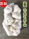 青森県産ニンニク種子 ニューホワイト6片 Lサイズ(kg‥12個〜14個) 1kg×ネット詰 【種にんにく】【青森県産】