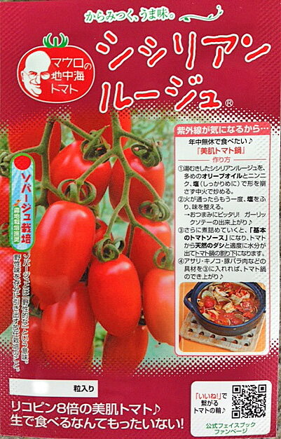 マロウの地中海トマト シシリアンルージュ ミニトマト種子 100粒【イタリアトマト】【野菜の種】