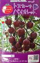 マロウの地中海トマトトスカーナバイオレットミニトマト種子100粒【イタリアトマト】【野菜の種】【郵便利用で送料無料】