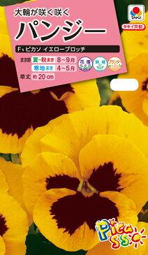 花タネ NL300 パンジー F1 ピカソ イエローブロッチ 小袋 [FPA658]【花の種】【タキイのタネ】【郵便送料110円〜】【ガーデニング】