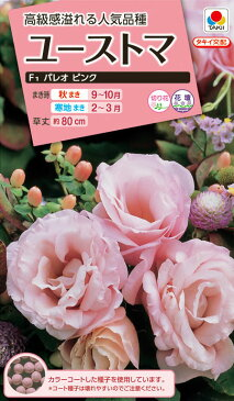 花タネ NL300 ユーストマ F1 パレオピンク 小袋 [FRS702]【花の種】【タキイのタネ】【郵便送料110円〜】【ガーデニング】