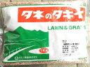 緑肥用種子 ライ麦 緑肥用ライ麦(晩生) 1kg【緑肥、景観用の種】【タキイのタネ】