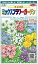花種 花絵具 ミックスフラワーガーデン 小袋 約5平米用 [905-901]【花の種】【サカタのタネ】【ガーデニング】
