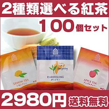 紅茶 ティーバック 【紅茶】2種類選べる100個セット/レモンティー/ダージリンティー/アップルティー 【送料無料】