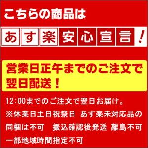 500mL当り250円税別【送料無料】POLA【ポーラ】2種類選べるシャワーブレイクプラス10Lノンシリコンシャンプー