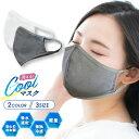 【冷感マスク】 ひんやり 涼しい 日本製 送料無料 (1枚)