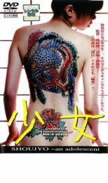 【中古】DVD▼少女 an adolescent▽レンタル落ち