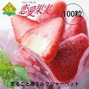 Ichigo100-300-1