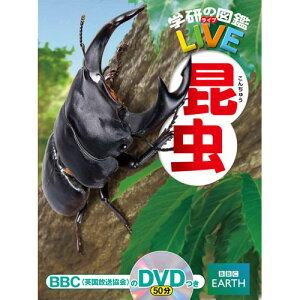 「LIVE」は本物の姿を伝える図鑑です!学研の図鑑LIVE(ライブ) 昆虫