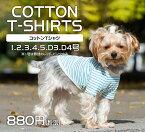 犬服コットンTシャツ綿100%verynewドッグウェアgiftbox入り