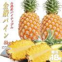 パイナップル 台湾産 金鑽パイン 5kg 完熟パイナップル 台湾パイン 糖度18度 【4月上旬〜発送予定】 母の日 プレゼント ギフト