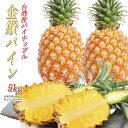 パイナップル 台湾産 金鑽パイン 約4〜5kg 完熟パイナッ