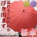 16本骨組 濡れると柄が浮き出る 傘  さくら傘 【傘/パラ...