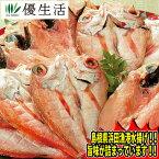 日本海浜田漁港のどぐろ開き 15枚セット