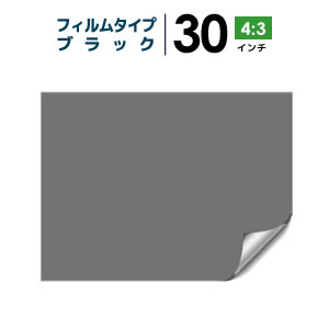 プロジェクタースクリーン 【3年保証/全国送料無料】 フィルムタイプ 30インチ(4:3) 背面投影フィルム ブラック シアターハウス bf-458-611