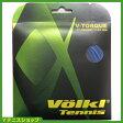 フォルクル(Volkl)V-Torque V トルク 1.23mm/17G ダークブルー 国内未発売 パッケージ品【あす楽】