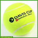【テニスボール】【テニス】★9月14日AM10時~16日AM10時までポイント5倍★直径29cm!デビスカッ...