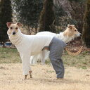 ハイネックストレートロンパース型紙 ばらばら印刷 大きな大型犬大型犬M〜大型犬XLの画像