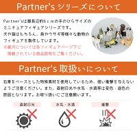 Partner's116トイ・プードルテディベアカット