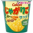 じゃがりこ サラダ(60g)