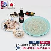 国産とらふぐ刺身・鍋セット(33cmプラ皿4〜5人前)