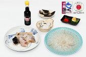 国産とらふぐ刺身・鍋セット(25cmプラ皿2〜3人前)