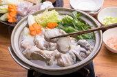 国産まふぐ鍋セット(まふぐ切身1.2kg)