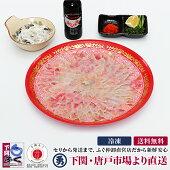 国産とらふぐ刺身セット(30cmプラ皿)