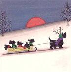 ミニグリーティングカード 【クリスマス】そりに乗ったスコティッシュ・テリア【封筒付き/白】【封筒サイズ128×128mm】【中面/「Merry Christmas」の文字あり】(XMWC0047)