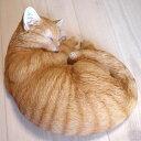メール便 不可× 動きだしそうなほどリアルにゃん♪猫の置物 まるまり眠り猫 茶トラ(オーナ...