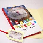 かご猫シロ メッセージブック HAPPY BIRTHDAY(誕生祝い)封筒付き【学研ステイフル】(バースデーブック 猫雑貨 ネコグッズ ねこ キャット)EC