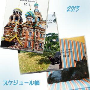 メール便○OK 旅猫ノロのオールカラーダイアリー【在庫限り】2013年 ヨーロッパを旅してしま...