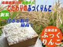 【北海道米】ふっくりんこ5kg【プロ御用達のお米】北海道深川...